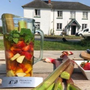 Rouge Cider Summer Punch outside Colcombe House